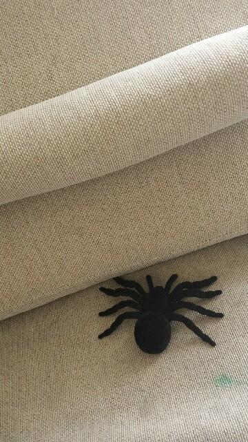 ダイソー蜘蛛のおもちゃ